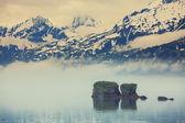 Mountain meadow in Alaska — Stock Photo