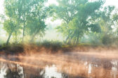 Летом река туман — Стоковое фото