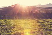 Beautiful Tundra landscape — Stock Photo
