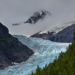 Bear glacier near Stewart — Stock Photo #81682854