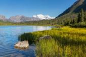 Wrangell-St. Elias National Park — Stock Photo