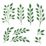 Green branches — Stock Vector #77466418