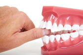 Fingers and teeth — Stock Photo