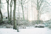Winter and snow conceputal image. — Stock Photo