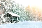 Winter conceptual image. — Stock Photo