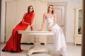 Portrait of beautiful two  girls — Foto Stock