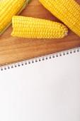 Corn Maize Cobs and Recipe Book — Stock Photo