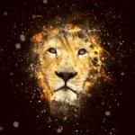 Постер, плакат: Conceptual Lion Portrait