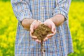 Farmer Checking Soil Quality of Fertile Agricultural Farm Land — Stock Photo