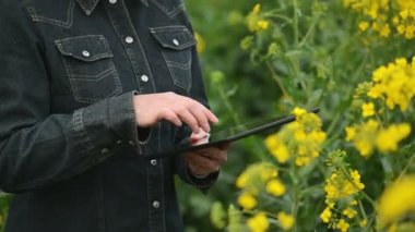 Female Farmer using Digital Tablet Computer in Oilseed Rapeseed Cultivated Agricultural Field Examining and Controlling The Growth of Plants — Stock Video