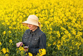 Female Farmer with Digital Tablet in Oilseed Rapeseed Cultivated — Stock Photo