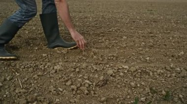 Male Farmer Examines Soil Quality on Fertile Agricultural Farm Land, Agronomist Checking Soil in Hands — Stock Video