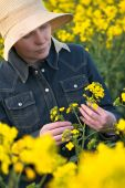 Female Farmer in Oilseed Rapeseed Cultivated Agricultural Field — Stock Photo