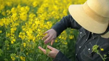 Female Farmer in Oilseed Rapeseed Cultivated Agricultural Field — Stock Video