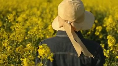 Female Farmer Walking in Oilseed Rapeseed Cultivated Agricultural Field Examining and Controlling The Growth of Plants, Crop Protection Concept — Stock Video