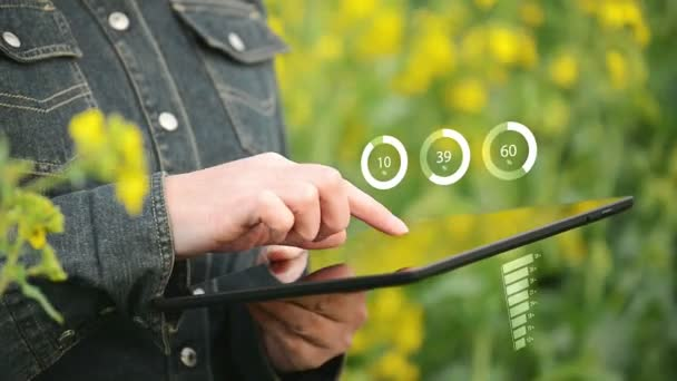Female Farmer using Digital Tablet Computer to view Infographics Charts in Oilseed Rapeseed Cultivated Agricultural Field — Vídeo de stock