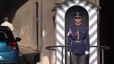 Prague Castle Guard Standing Still with Group of Tourists — Stock Video