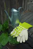 Garden still-life with watering-can and gloves — Stockfoto