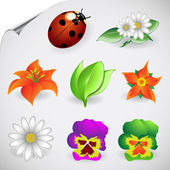 Vector Illustrations of Natural and Floral Icons — Stock Vector