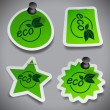 Green Eco Paper Cut Stickers Template — Stock Vector #57850913