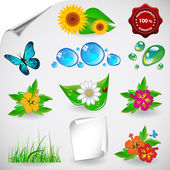 Set of Natural, Floral Icons Clipart — Stockvector