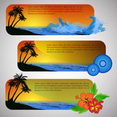 Summer Beach Banner Set — Vetor de Stock