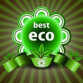 Best Eco - Green Retro Styled Eco Friendly Satisfaction Guarantee or Quality Commitment Label, Icon, Tag or Badge Template for Business or Promotion — ストックベクタ