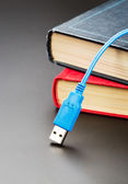 Blue usb cable on books — Stock Photo