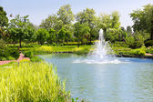 Lake in spring park with fountain — Stock Photo