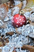Christmas ball on dead leaves — Stock Photo