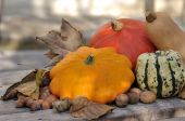 Pattypan with other squash — Stock Photo