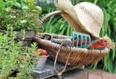 Garden accessories — Стоковое фото