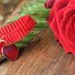 Heart pendant with red roses — Stock Photo #62325493