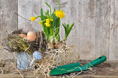 Eggs in nest with daffodils  — Stock Photo