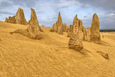 Pinnacle Desert — Stock Photo