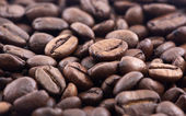Coffee beans closeup background — Stockfoto