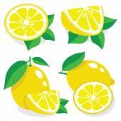 Lemon vector illustration — Stock Vector