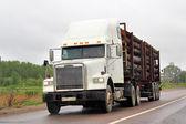 Freightliner FLD — Stockfoto