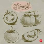 Set of hand drawn sketch style tomatoes doodles — Vector de stock