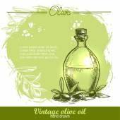 Vintage olive oil bottle with olive branch — Stock Vector
