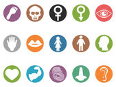 Human feature round buttons icons set — Stock Vector