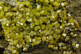 Bright green pyromorphite mineral crystals — Стоковое фото