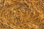 収穫された分野でわら俵 — ストック写真