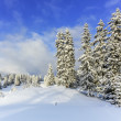 Jura mountain in winter, Switzerland — Stock Photo #58621567