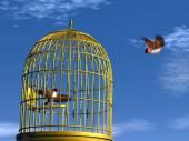 Freedom versus prison - 3D render — Stock Photo