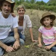 Family of farmers planting seedling — Stock Photo #53973197