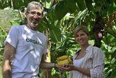 Couple of farmers visiting banana plantation — Stock Photo