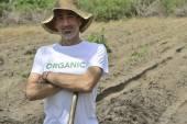 Farmer planting seedling — Stock Photo