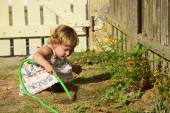 Kid watering flowers in garden — Stock fotografie