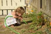 Kid watering flowers in garden — Foto de Stock